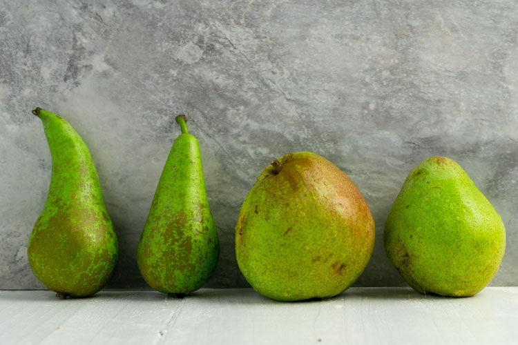 pear conference and doyenne
