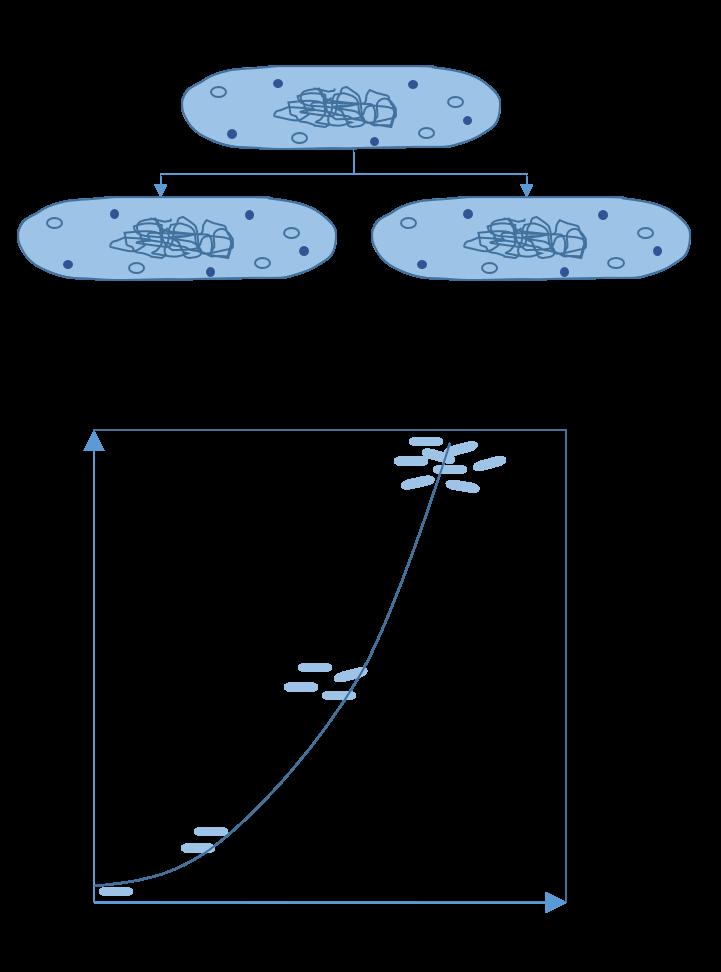 bacteria-growth