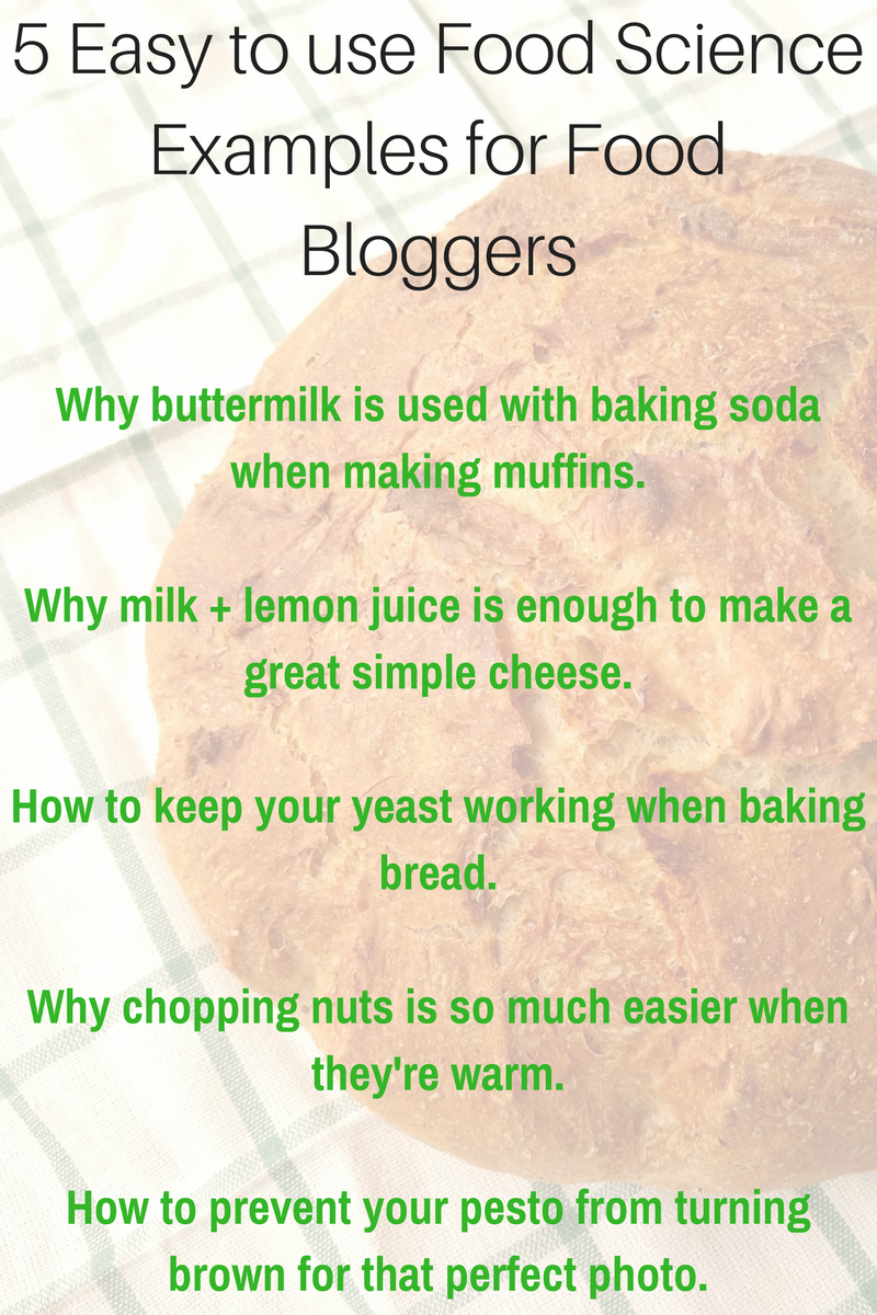 Food Science For Food Bloggers 5 Easy To Use Examples
