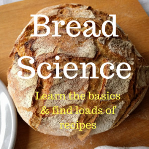 bread science