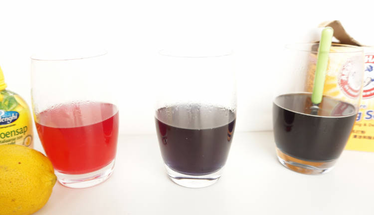 red cabbage experiment three glasses