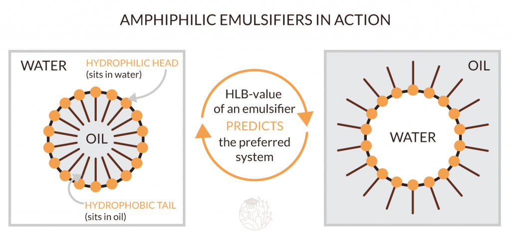 amphiphilic emulsifiers in action