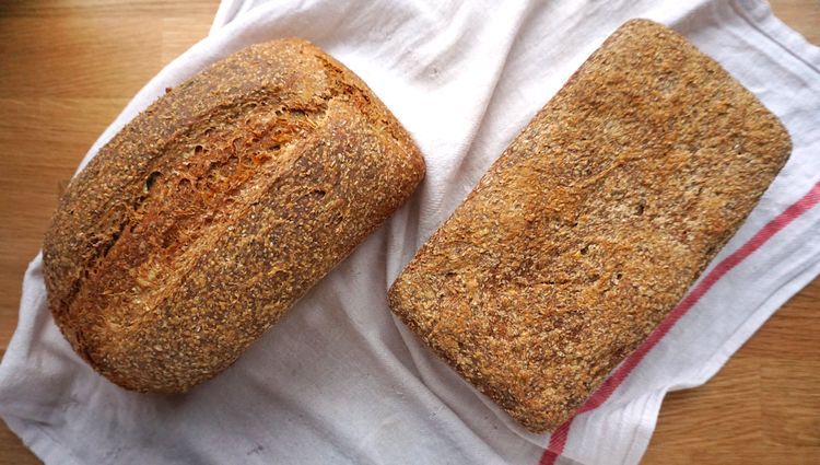 too long and just fin risen doughs for bread