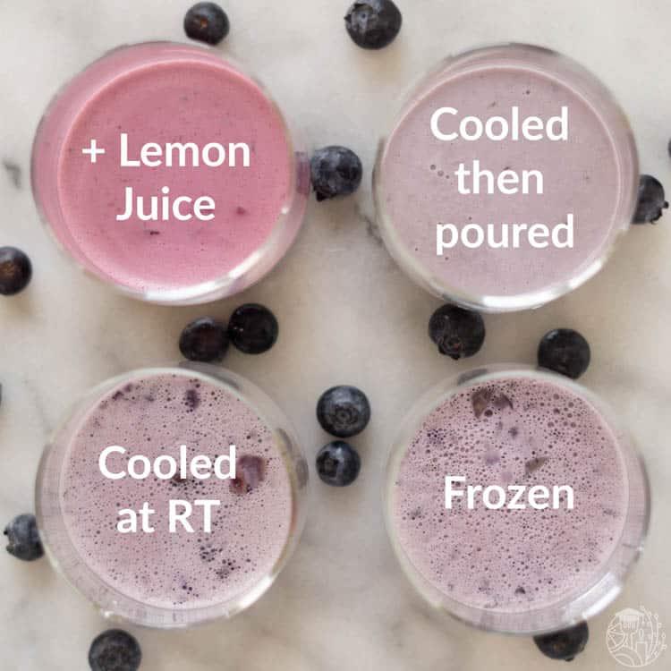 4 blueberry panna cotta tests