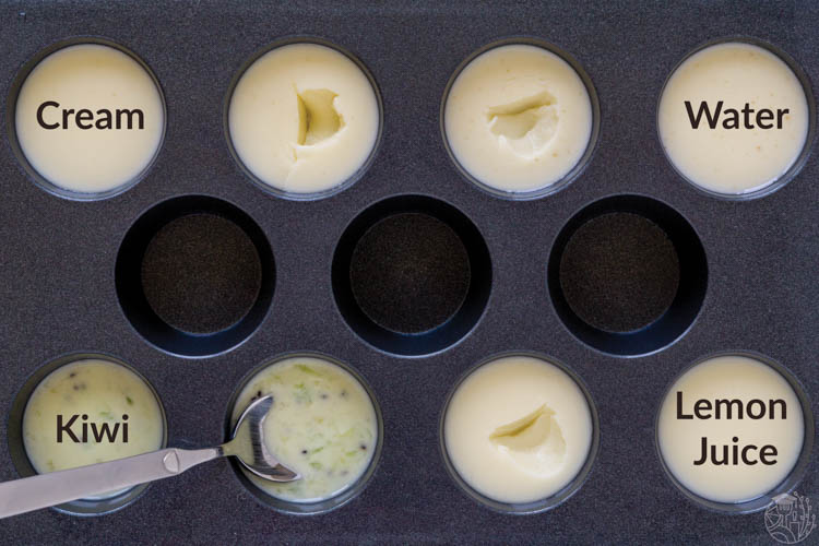4 different panna cotta recipes, set